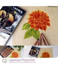 Set Polycolor pencils Lyra...