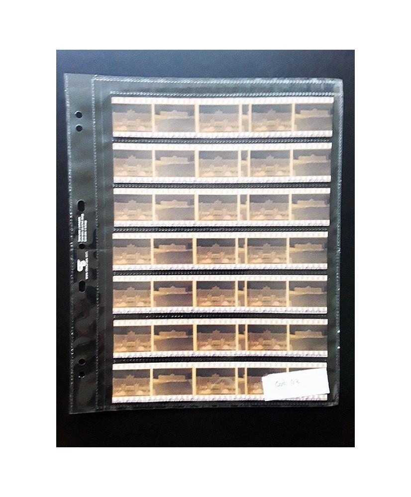 C&R: Hoja para álbum de polipropileno de 7 secciones de 35 mm c/u